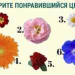 Цветочный тест. Раскройте свою индивидуальность