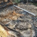 Находки археологов времен нашествия орды Батыя. Доказательства или опровержение?
