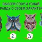 Тест: мудрая сова раскроет характер