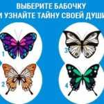 Тест: бабочка поведает о вашей натуре