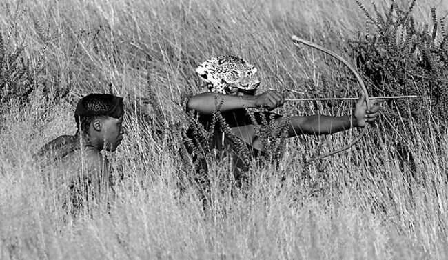 Охота бушменов