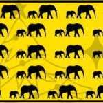 Тест: проверьте внимательность – найдите отличающегося слона на картинке