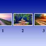 Тест: выбрав дорогу на картинке, вы узнаете, что вас ждет в будущем