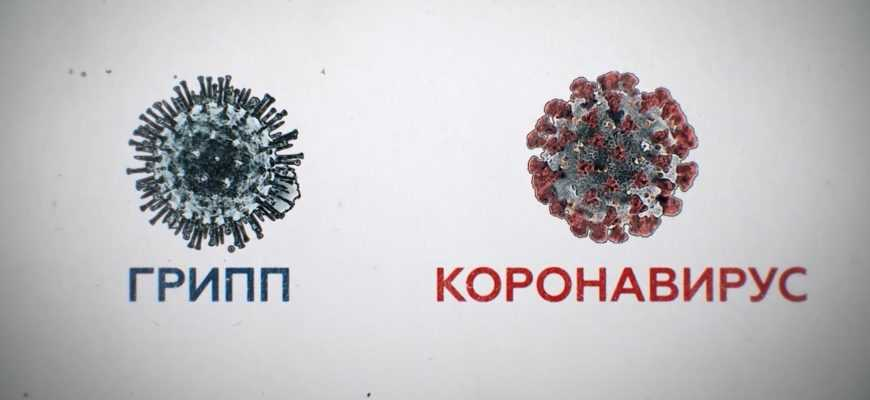 Грипп и коронавирус: похожие, но разные