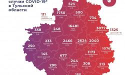 Коронавирус в Тульской области на 13 мая 2021 года по городам и районам: сколько заболело и умерло