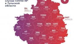Коронавирус в Тульской области на 21 января 2021 года по городам и районам: сколько заболело и умерло