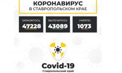 Коронавирус в Ставропольском крае на 28 февраля 2021 года по районам и селам: сколько заболело на сегодня