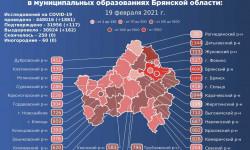 Коронавирус в Брянской области на 20 февраля 2021 года по городам и районам: сколько заболело и умерло