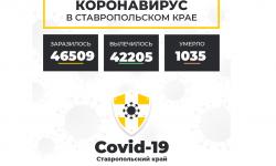 Коронавирус в Ставропольском крае на 20 февраля 2021 года по районам и селам: сколько заболело на сегодня