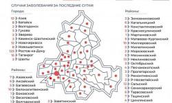 Коронавирус в Ростовской области на 13 февраля 2021 года по городам и районам: сколько заболело и умерло