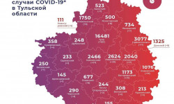 Коронавирус в Тульской области на 11 мая 2021 года по городам и районам: сколько заболело и умерло