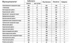 Коронавирус в Белгородской области на 25 ноября 2020 года по городам и районам: сколько заболело