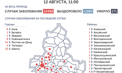 Коронавирус в Ростове-на-Дону 13 августа 2020 года: сколько заболевших на сегодня
