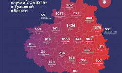 Коронавирус в Тульской области на 19 декабря 2020 года по городам и районам: сколько заболело и умерло