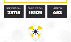 Коронавирус в Ставропольском крае на 10 ноября 2020 года по районам и селам: сколько заболело на сегодня